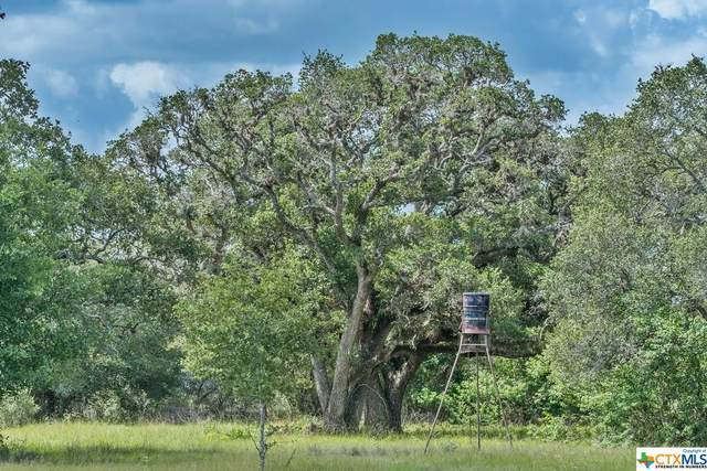 881 Private Road 1265, Edna, TX 77957 (MLS #417787) :: The Zaplac Group