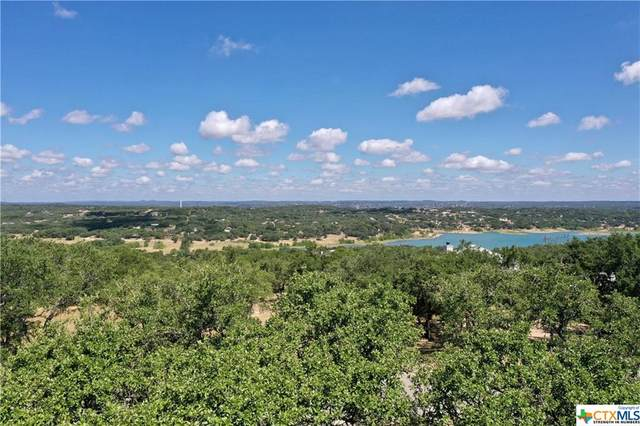 1530 Bella Vista, Canyon Lake, TX 78133 (MLS #417825) :: Brautigan Realty