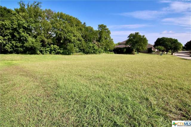 912 Paint Brush Lane, Temple, TX 76502 (MLS #418160) :: The Zaplac Group