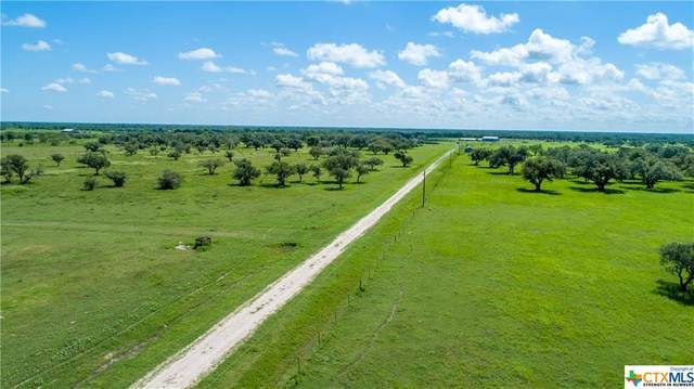 486 Hwy 183, Refugio, TX 78377 (MLS #418715) :: The Myles Group