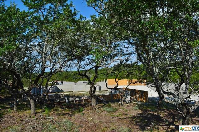 499 Primrose Path, Canyon Lake, TX 78133 (MLS #418733) :: Isbell Realtors