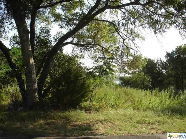 5531 Denmans Loop, Belton, TX 76513 (MLS #418767) :: Isbell Realtors