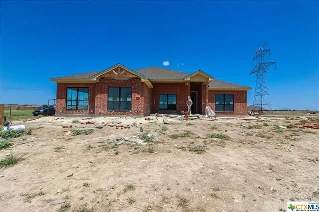 9104 Green Tree, Salado, TX 76571 (MLS #418826) :: The Real Estate Home Team