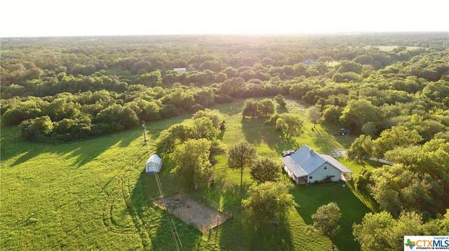 480 W Henning Road, Goliad, TX 77963 (MLS #418885) :: The Zaplac Group