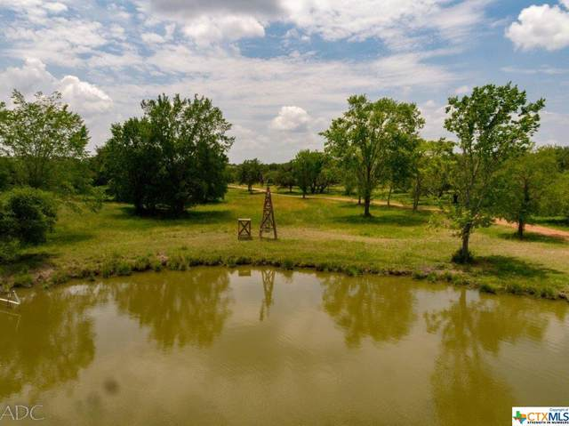 23715 Us Hwy 77 North, Yoakum, TX 77995 (MLS #418889) :: Brautigan Realty