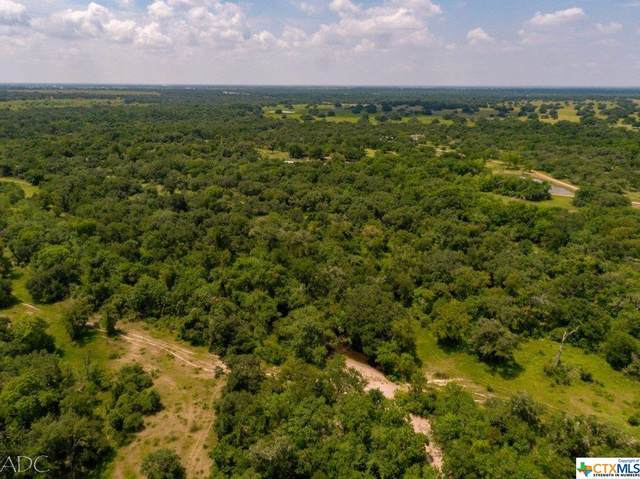 23715 Us Hwy 77, Yoakum, TX 77995 (MLS #418902) :: Brautigan Realty