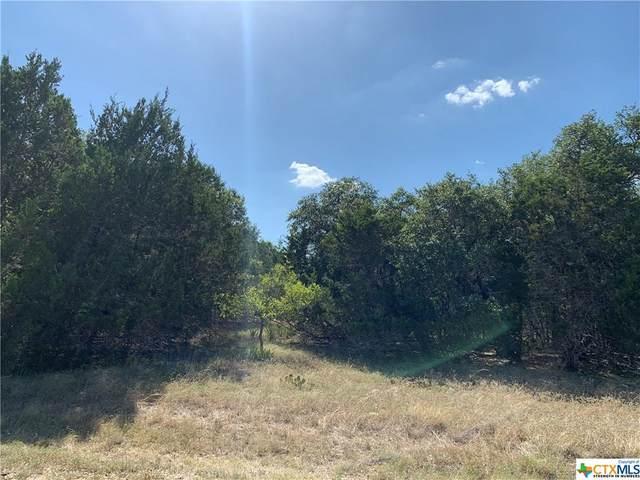 7801 Rita Bend Drive, Salado, TX 76571 (MLS #419228) :: Brautigan Realty