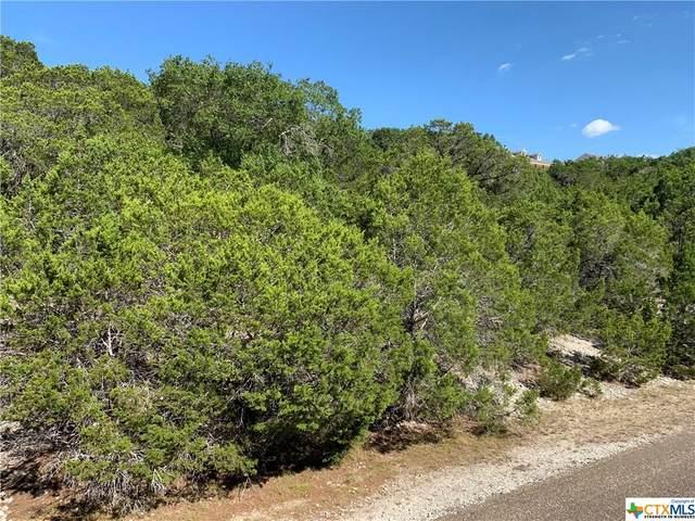 8275 Scenic Lakeview Drive, Salado, TX 76571 (MLS #419230) :: Brautigan Realty