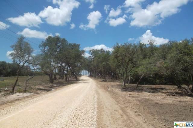 0 Fm 2506, Fannin, TX 77960 (MLS #419401) :: Kopecky Group at RE/MAX Land & Homes