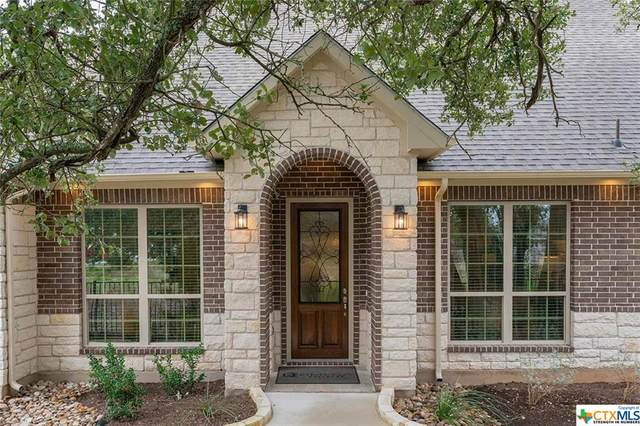 1309 Horizon View Drive, Georgetown, TX 78628 (MLS #419476) :: The Zaplac Group