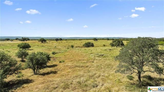 TBD Ranch Road 3347, Round Mountain, TX 78663 (MLS #419836) :: The Zaplac Group