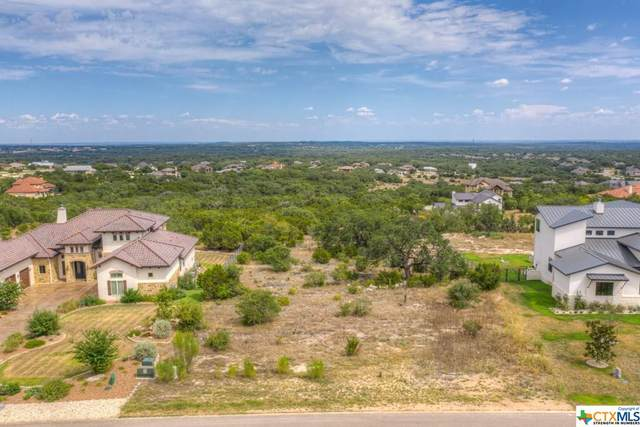315 Copper Crest, New Braunfels, TX 78132 (MLS #419893) :: The Zaplac Group