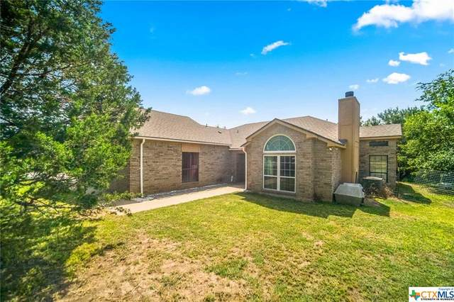 3138 County Road 3220, Kempner, TX 76539 (MLS #419919) :: The Zaplac Group