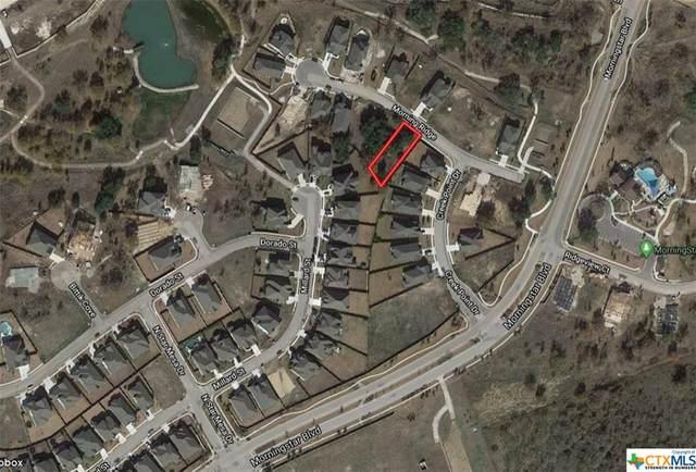 324 Morning Ridge Court, Georgetown, TX 78628 (MLS #420096) :: Carter Fine Homes - Keller Williams Heritage