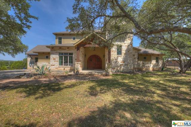 1313 Ensenada Drive, Canyon Lake, TX 78133 (MLS #420137) :: The Zaplac Group