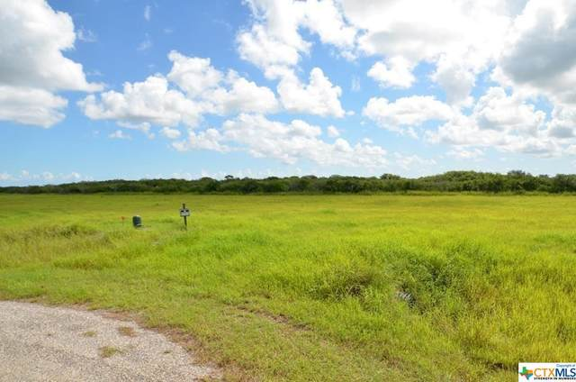 000 Redfish Way, Port Lavaca, TX 77979 (MLS #420230) :: RE/MAX Family