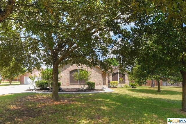 113 Indian Blanket Street, Cibolo, TX 78108 (MLS #420387) :: The Zaplac Group