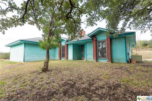 3013 County Road 3300, Kempner, TX 76539 (MLS #420575) :: The Real Estate Home Team