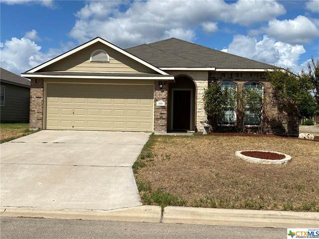 330 Emerald Ridge Drive, Temple, TX 76502 (MLS #420695) :: The Zaplac Group