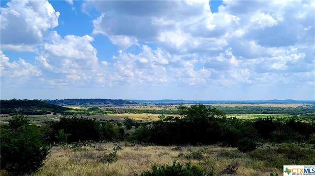 TBD Ranch Road 108, Lampasas, TX 76550 (MLS #420746) :: The Real Estate Home Team