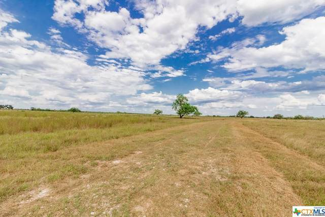 546 Ewing, Goliad, TX 77963 (MLS #420763) :: RE/MAX Land & Homes