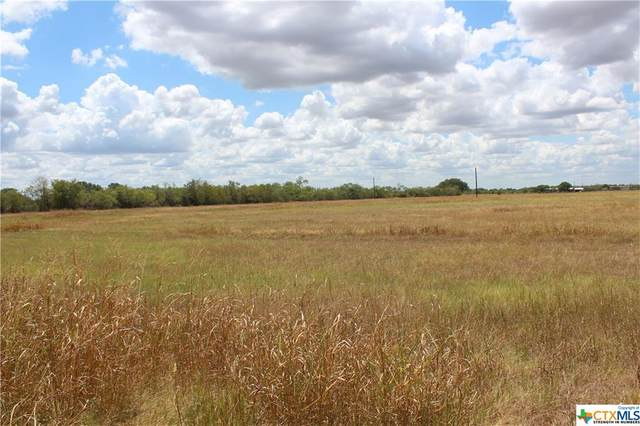 680 Warncke Road, La Vernia, TX 78121 (MLS #420986) :: Kopecky Group at RE/MAX Land & Homes