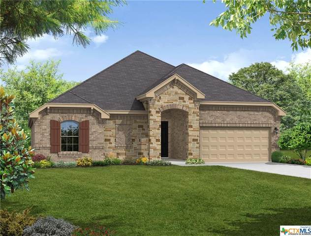 117 Frogfruit Way, San Marcos, TX 78666 (MLS #421025) :: Kopecky Group at RE/MAX Land & Homes