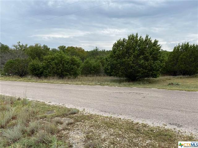 TBD County Road 1020, Lampasas, TX 76550 (MLS #421115) :: The Real Estate Home Team