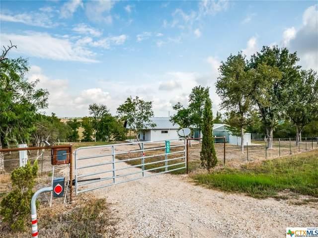 650 Schwarzlose Road, New Braunfels, TX 78130 (MLS #421242) :: The Myles Group