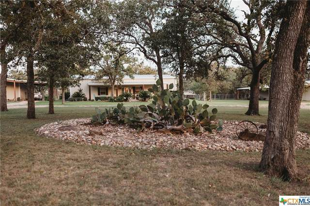 3265 Danforth Rd Danforth Rd., Goliad, TX 77963 (MLS #421545) :: Kopecky Group at RE/MAX Land & Homes
