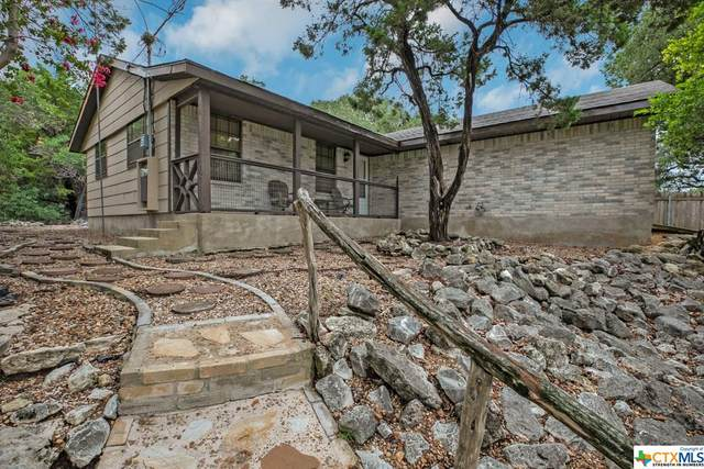 1569 Skyline Hills, Canyon Lake, TX 78133 (MLS #421859) :: Brautigan Realty