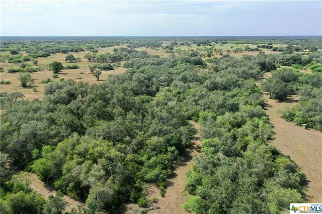 15531 Fm 2441-Tract D, Goliad, TX 77963 (MLS #421867) :: RE/MAX Land & Homes