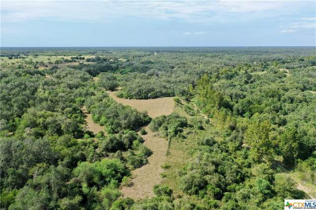 15531 Fm 2441- Tract C, Goliad, TX 77963 (MLS #421868) :: RE/MAX Land & Homes