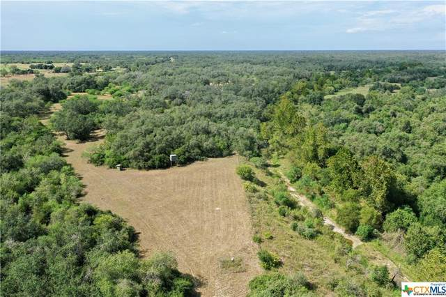 15531 Fm 2441- Tract A, Goliad, TX 77963 (MLS #421869) :: The Zaplac Group