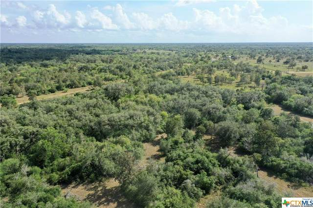 15531 Fm 2441- Tract B, Goliad, TX 77963 (MLS #421871) :: RE/MAX Land & Homes
