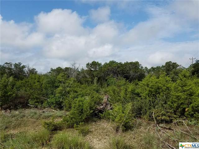 0 Freedom, Fischer, TX 78623 (MLS #421881) :: The Real Estate Home Team