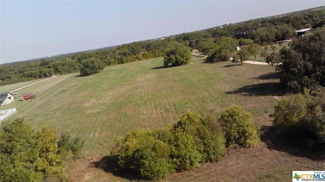 2910 Fm 971, Georgetown, TX 78626 (MLS #421937) :: Kopecky Group at RE/MAX Land & Homes