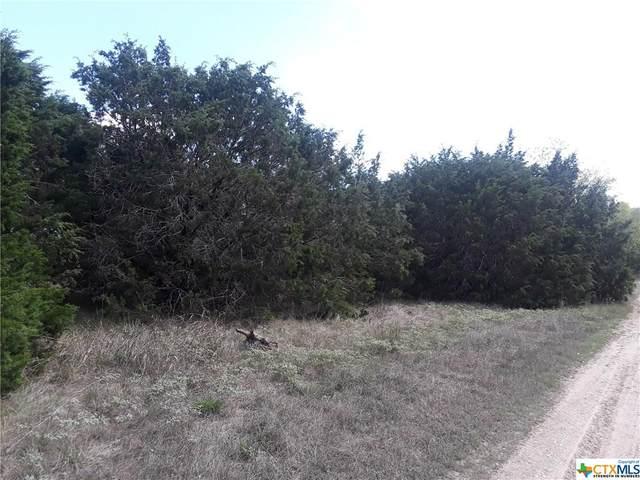 140 Bramble Bush Drive, OTHER, TX 76513 (#421968) :: First Texas Brokerage Company