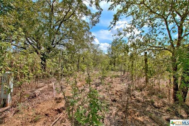 15870 Saint Hedwig Road, Saint Hedwig, TX 78152 (MLS #422080) :: The Zaplac Group