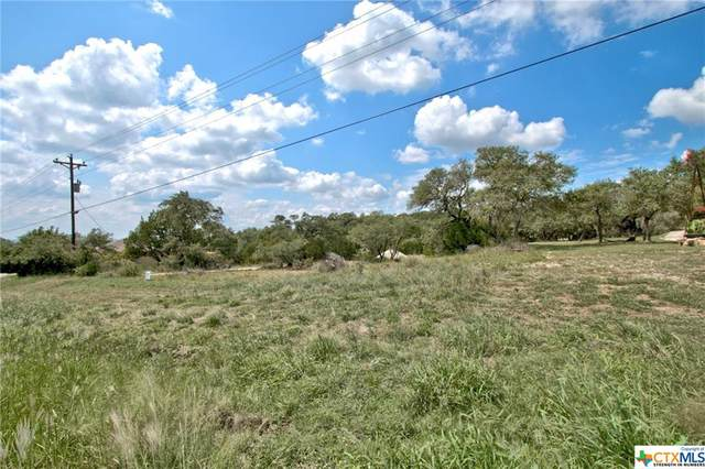 1685 Fm 3424, Canyon Lake, TX 78133 (MLS #422109) :: Kopecky Group at RE/MAX Land & Homes