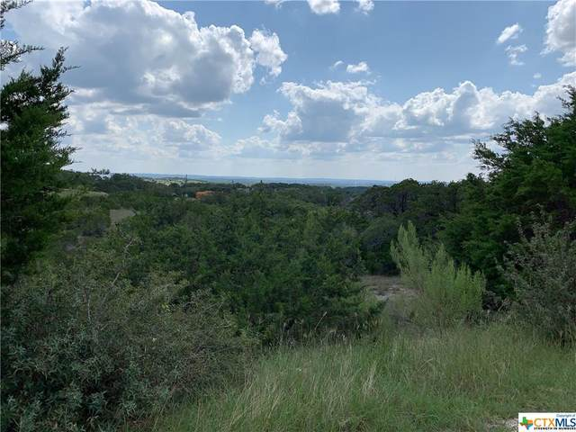 195 Bluebonnet Breeze, Canyon Lake, TX 78133 (MLS #422177) :: Kopecky Group at RE/MAX Land & Homes