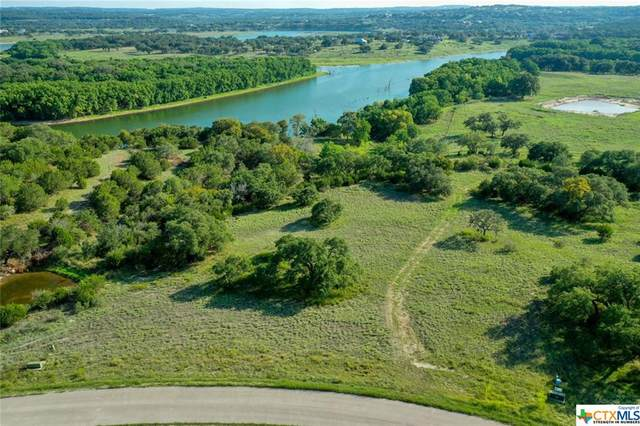 311 River Cliff Place, Spring Branch, TX 78070 (MLS #422285) :: Berkshire Hathaway HomeServices Don Johnson, REALTORS®