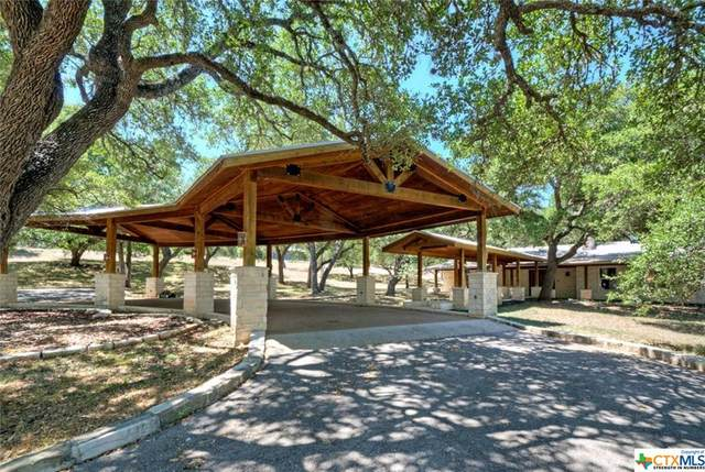 24151 Ranch Road 12, Dripping Springs, TX 78620 (MLS #422302) :: The Real Estate Home Team