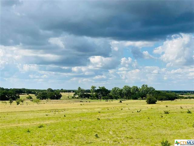 2621 County Road 3270 Lot 14 Rylan Ranch, Kempner, TX 76539 (MLS #422439) :: Brautigan Realty