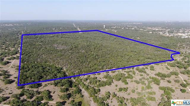0 State Hwy 46, New Braunfels, TX 78132 (MLS #422444) :: The Zaplac Group