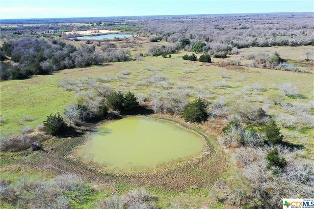Tract 1 County Rd 401, Flatonia, TX 78941 (MLS #422448) :: The Zaplac Group