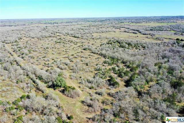 Tract 2 County Rd 401, Flatonia, TX 78941 (MLS #422454) :: Vista Real Estate