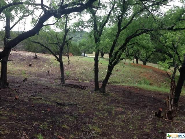 TBD Saddle Ridge Drive, Bertram, TX 78605 (MLS #422468) :: Brautigan Realty
