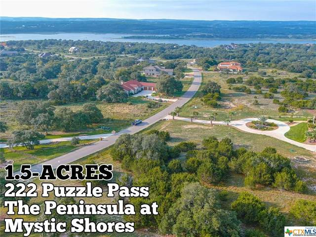 222 Puzzle Pass, Spring Branch, TX 78070 (MLS #422502) :: Berkshire Hathaway HomeServices Don Johnson, REALTORS®