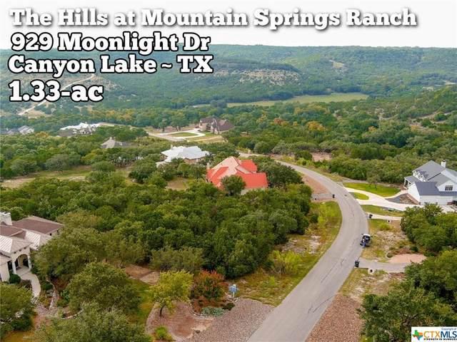 929 Moonlight Drive, Canyon Lake, TX 78133 (MLS #422504) :: Kopecky Group at RE/MAX Land & Homes